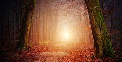 soñar con ritos y rituales